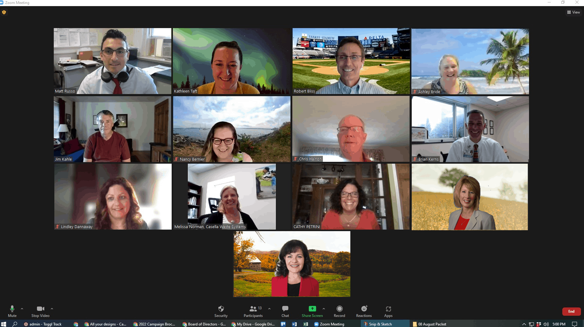Board of Directors attending a meeting on Zoom.